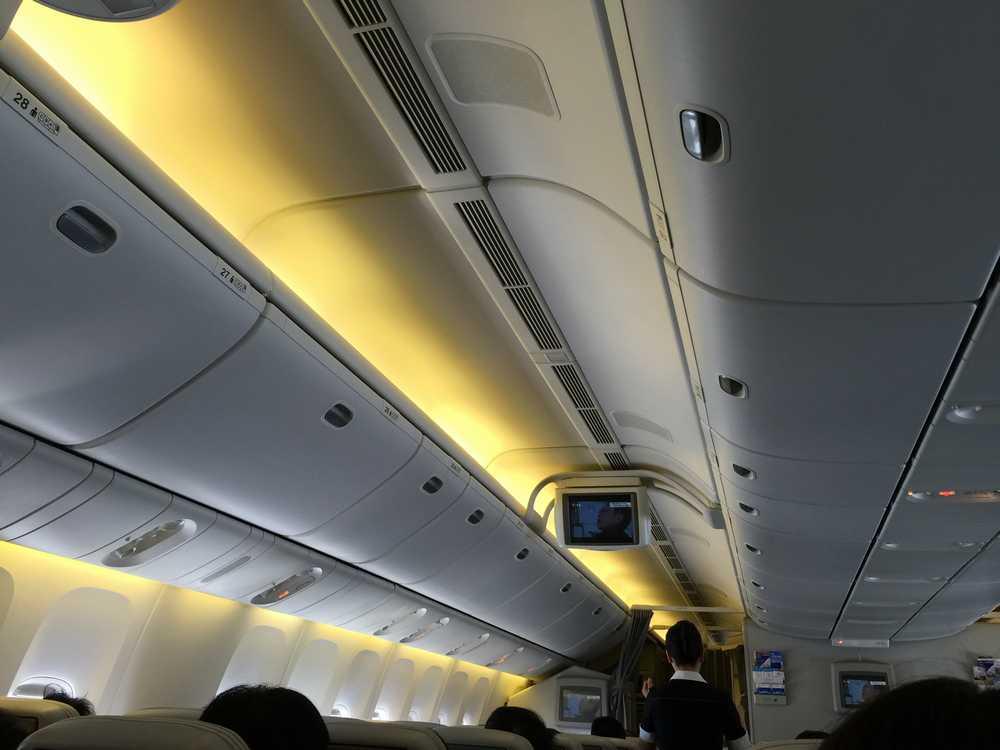 JAL81便の天井画像