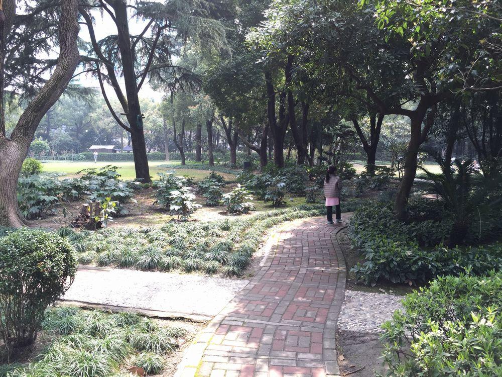 静かなオークラガーデンホテル上海の庭園画像