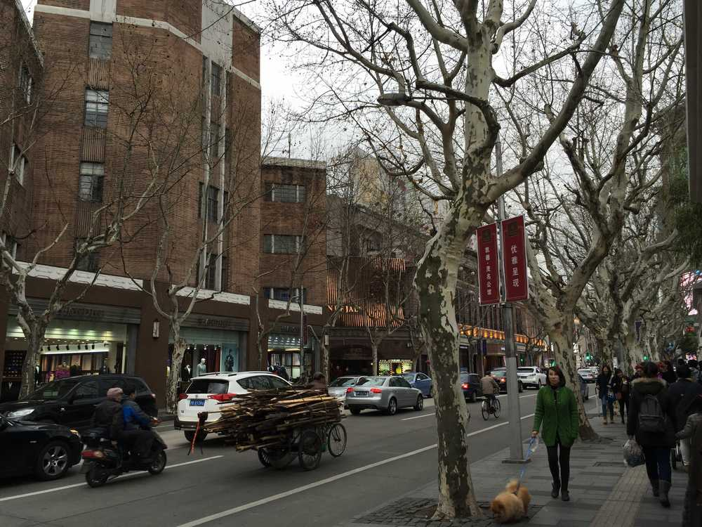 上海の茂名南路画像